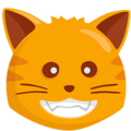 Grinning Cat on Messenger 1.0