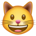 Grinning Cat on WhatsApp 2.19.352
